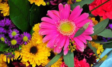 Ayurveda: Medicinal Use of Flowers at Home