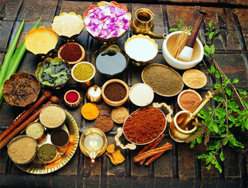 Ayurvedic Health Retreats in South India