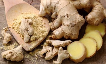Benefits of Ginger According to Ayurveda