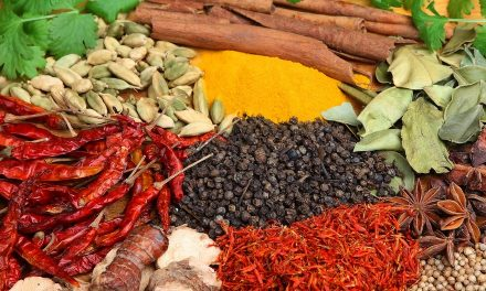 Five Ayurvedic Herbs We Must Have in Our Kitchen