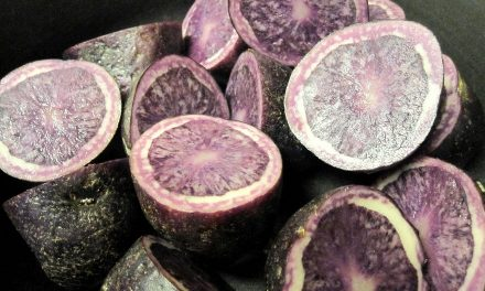 Purple Potatoes Help Prevent Colon Cancer