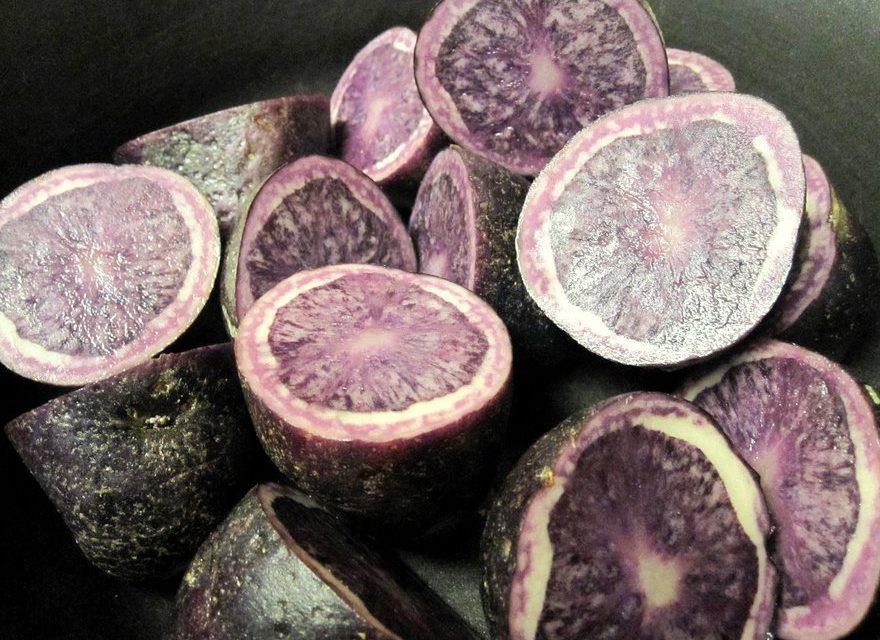 Purple Potatoes Help Prevent Colon Cancer
