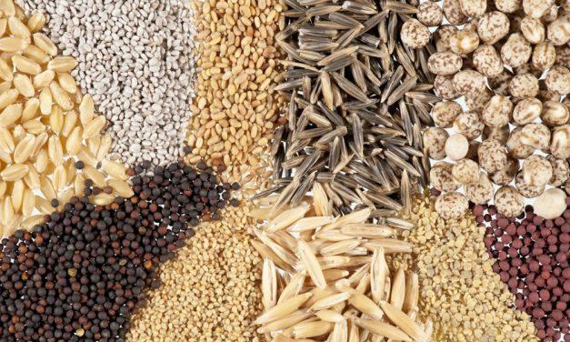 Top 5 Healthiest Seeds