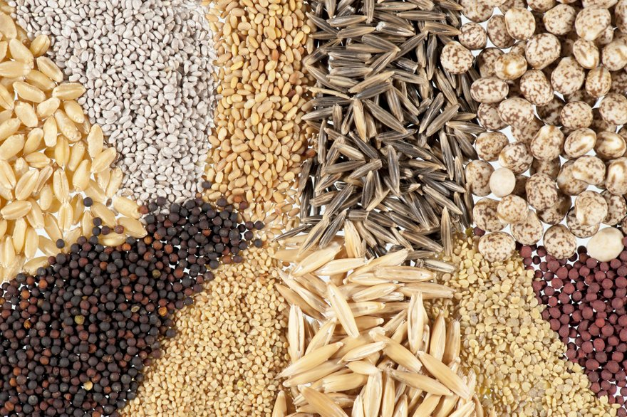 Top 5 Healthiest Seeds