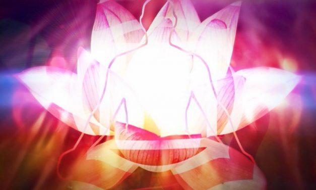 Muladhara: The Most Important Chakra