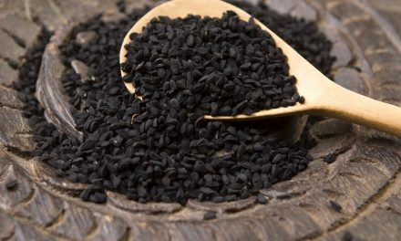 Black Seed Oil: Ancient Remedy That Cures All Diseases