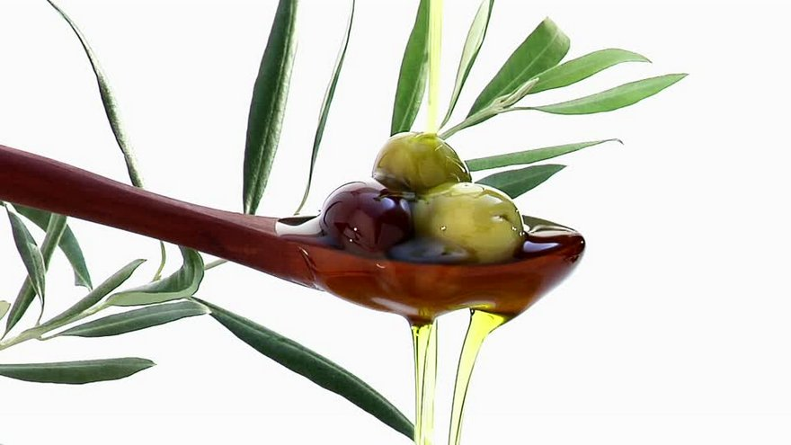 olive oil leaf