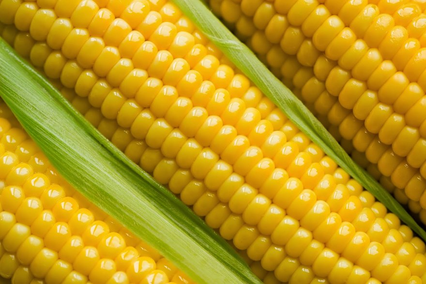 Health Benefits of Sweet Corn