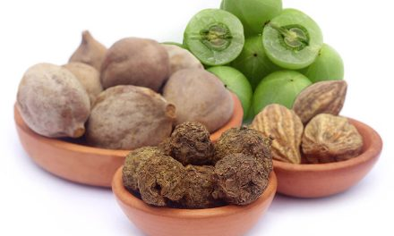 Magical Ayurvedic Herbs For Hair Loss