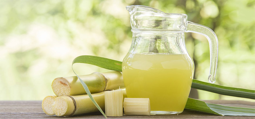sugarcane-01