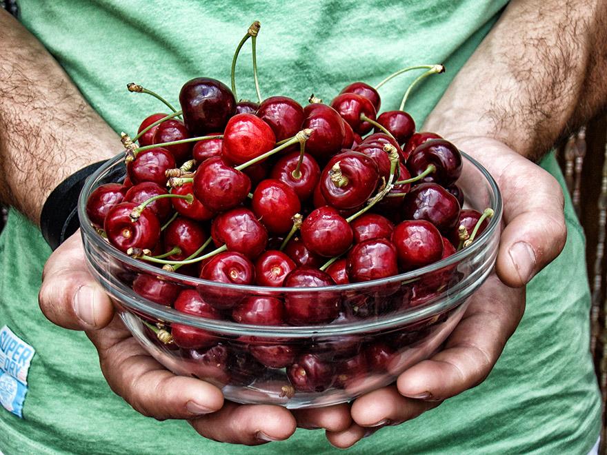 cherries-01