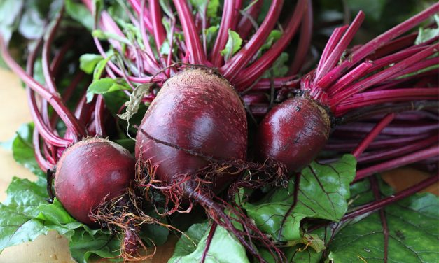 The Health Benefits of Beetroot