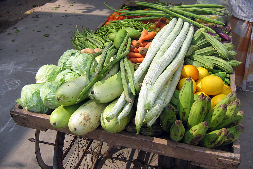 Ayurvedic Diet in Every Day Lifestyle