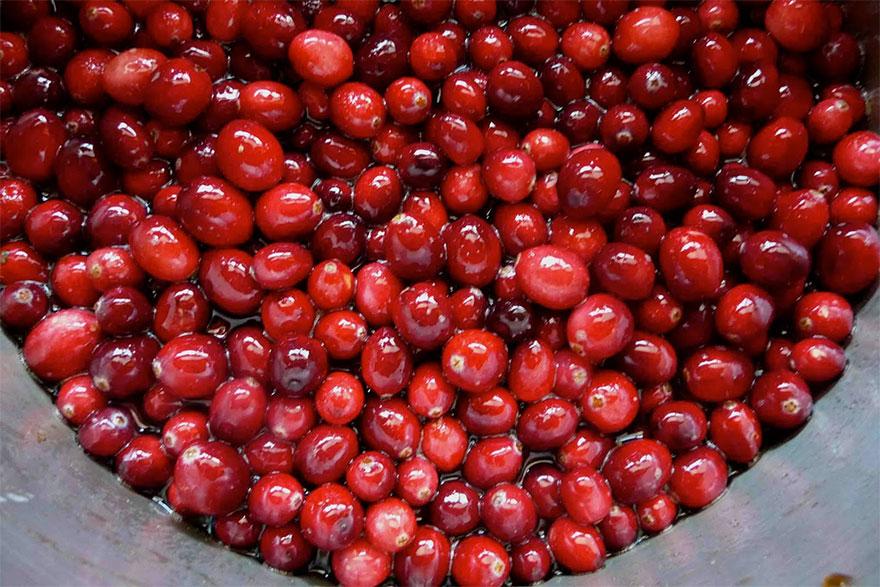 cranberry-04