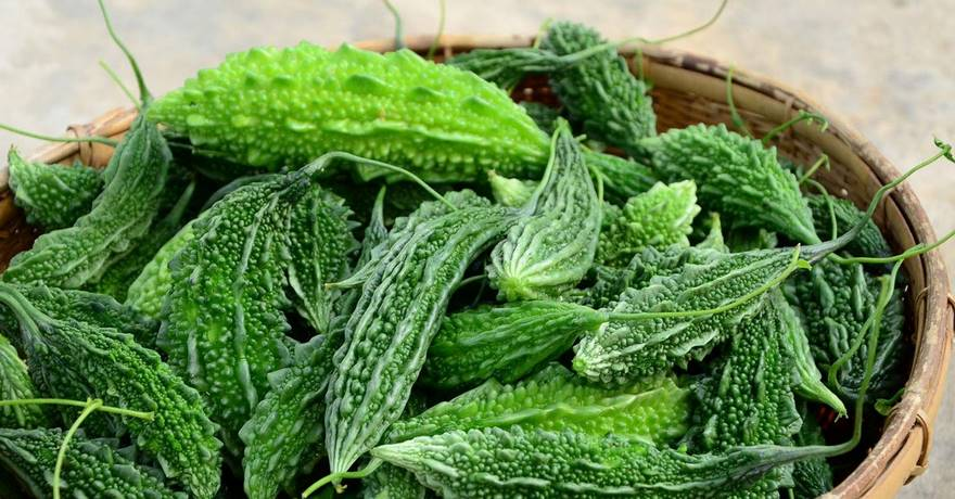 Benefits of Bitter Gourd (Karela) Juice